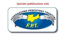 FPT web